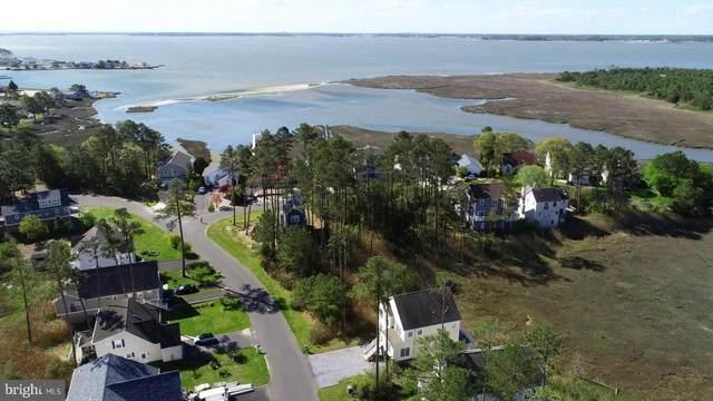 3 Cove View Road, MILLSBORO, DE 19966 (#DESU2003486) :: Atlantic Shores Sotheby's International Realty