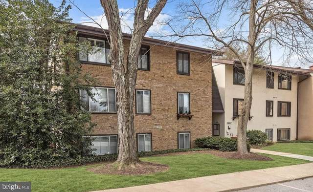 10067 Windstream Drive #6, COLUMBIA, MD 21044 (#MDHW2003040) :: ExecuHome Realty