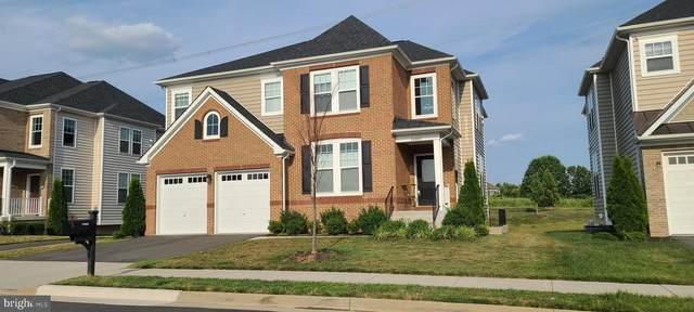 24800 Beardgrass Place, ALDIE, VA 20105 (#VALO2005158) :: AJ Team Realty