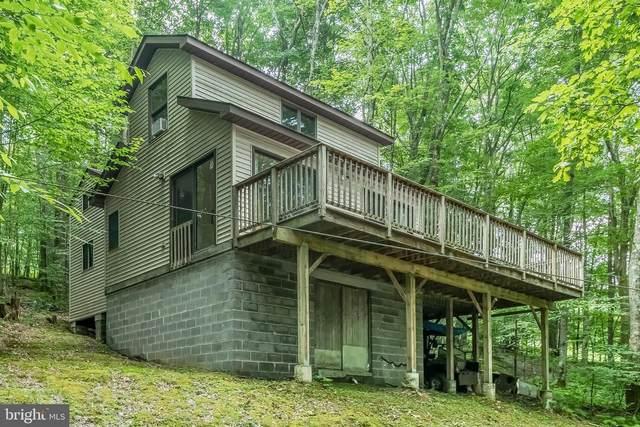 383 Tall Oaks, OAKLAND, MD 21550 (#MDGA2000590) :: Bruce & Tanya and Associates