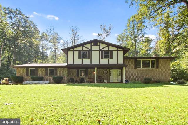 1286 Bremer Road, DOVER, PA 17315 (#PAYK2003782) :: The Dailey Group
