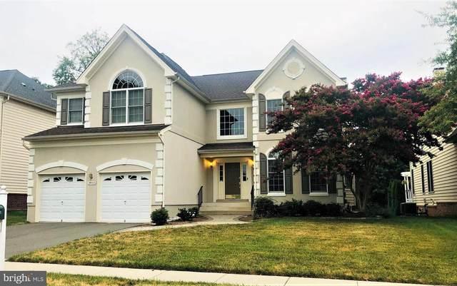 20333 Medalist Drive, ASHBURN, VA 20147 (#VALO2005194) :: Debbie Dogrul Associates - Long and Foster Real Estate