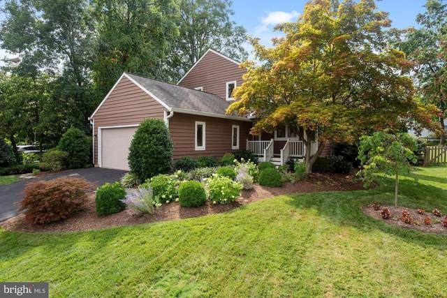12 Rutherford Circle, STERLING, VA 20165 (#VALO2005226) :: Debbie Dogrul Associates - Long and Foster Real Estate