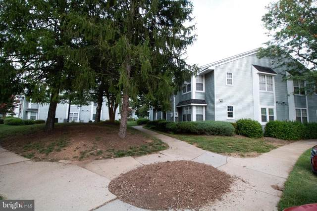 5375-C Bedford Terrace 75C, ALEXANDRIA, VA 22309 (#VAFX2013256) :: AJ Team Realty