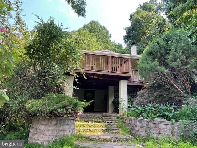 347 Restmore Lane, STANLEY, VA 22851 (#VAPA2000184) :: Debbie Dogrul Associates - Long and Foster Real Estate