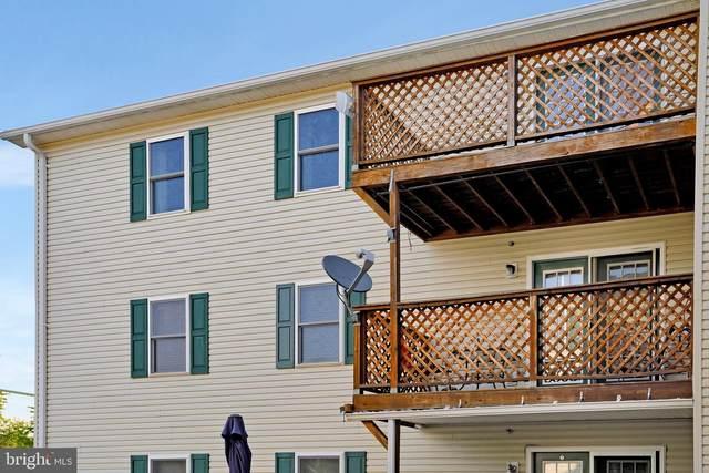 145-F-9 Hailey Lane, STRASBURG, VA 22657 (#VASH2000584) :: Debbie Dogrul Associates - Long and Foster Real Estate