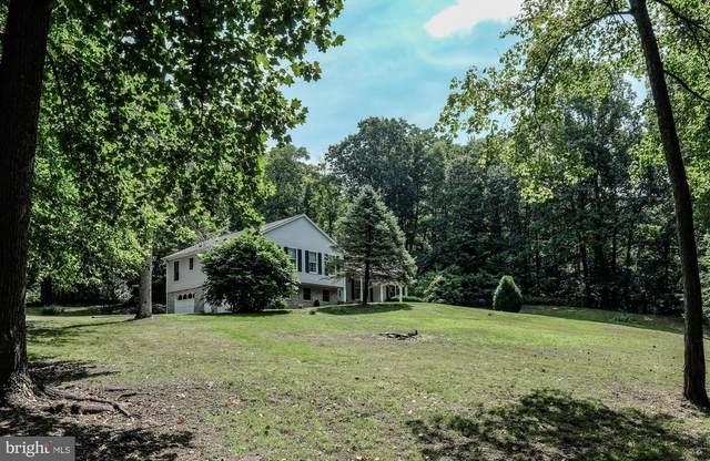 493 High Knob Road, FRONT ROYAL, VA 22630 (#VAWR2000544) :: Debbie Dogrul Associates - Long and Foster Real Estate
