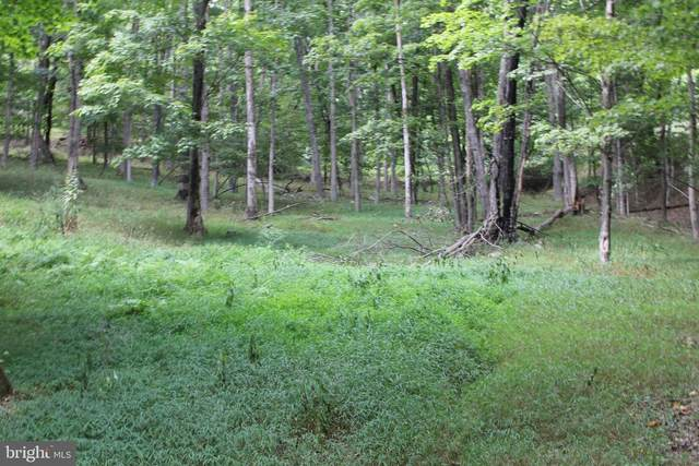 Lot 164 South Branch Mountain Road, MOOREFIELD, WV 26836 (#WVHD2000170) :: The Redux Group