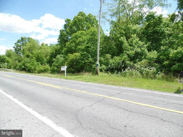 Rocky Ridge, ROCKY RIDGE, MD 21778 (#MDFR2003642) :: Great Falls Great Homes