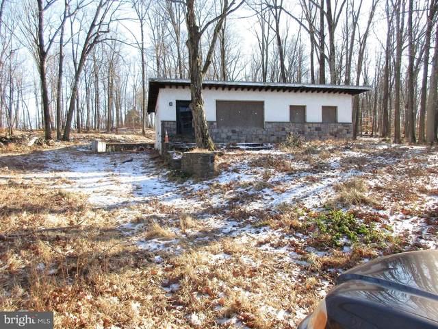 3742 Windy Bush Road, NEW HOPE, PA 18938 (#PABU2005064) :: Team Martinez Delaware