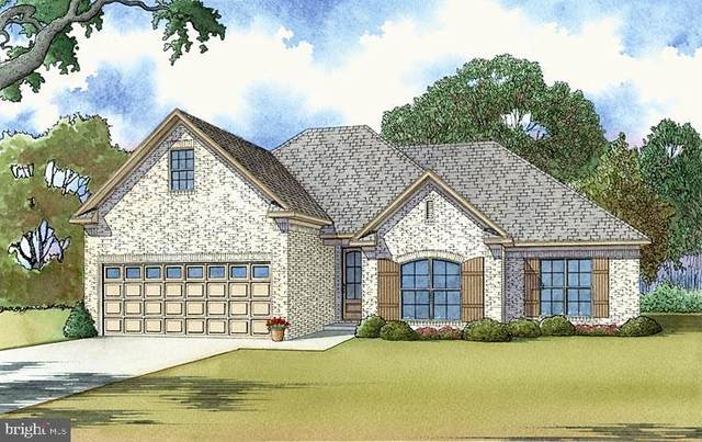 Lot 30 Hickory Cove Road, HURLOCK, MD 21643 (#MDDO2000442) :: At The Beach Real Estate