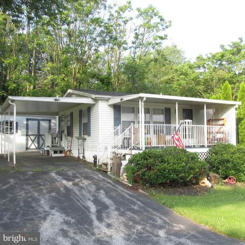 55 Katie Drive, RONKS, PA 17572 (#PALA2003502) :: The Joy Daniels Real Estate Group