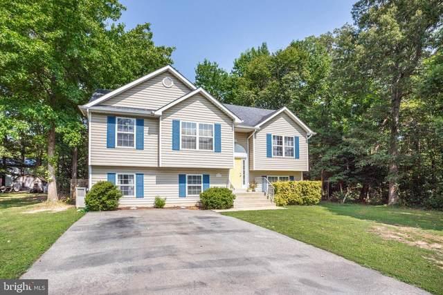 26171 Sandy Court, MECHANICSVILLE, MD 20659 (#MDSM2001328) :: Colgan Real Estate