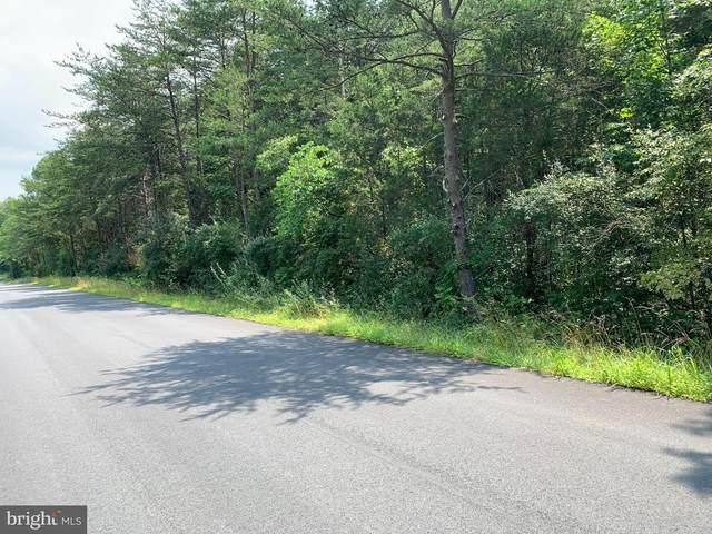 12007 Robin Drive, CATHARPIN, VA 20143 (#VAPW2005728) :: Dart Homes