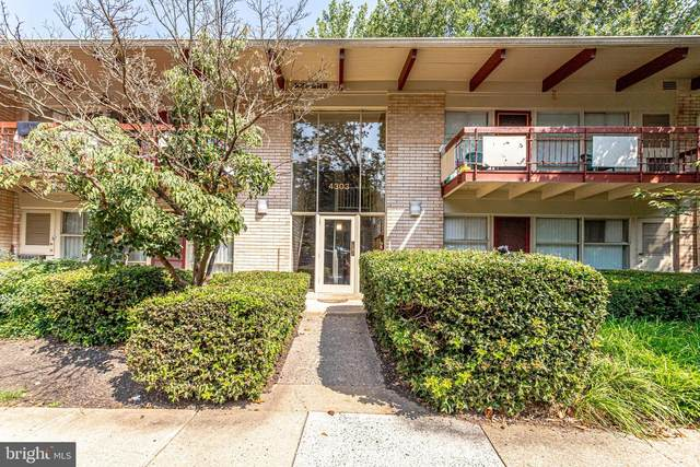 4303 Americana Drive #11, ANNANDALE, VA 22003 (#VAFX2014530) :: Debbie Dogrul Associates - Long and Foster Real Estate