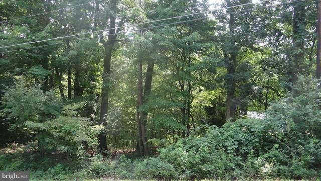 2004 Running Deer Drive, AUBURN, PA 17922 (#PASK2000964) :: The Joy Daniels Real Estate Group