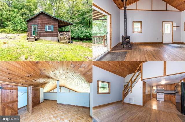 177 Bearfoot Road, ACCIDENT, MD 21520 (#MDGA2000664) :: AJ Team Realty