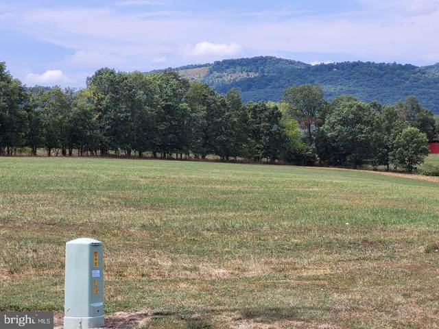 Hickory Loop Dr, PURGITSVILLE, WV 26845 (#WVHD2000186) :: Dart Homes