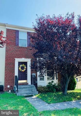 177 Oxbow Drive, STRASBURG, VA 22657 (#VASH2000668) :: Dart Homes