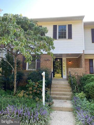 5886 Langton Drive, ALEXANDRIA, VA 22310 (#VAFX2014914) :: Key Home Team