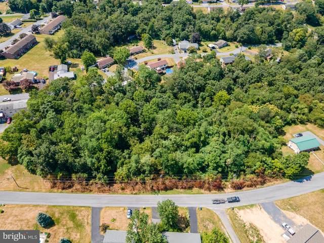 Lake Shore Drive, CHAMBERSBURG, PA 17202 (#PAFL2001504) :: Eng Garcia Properties, LLC