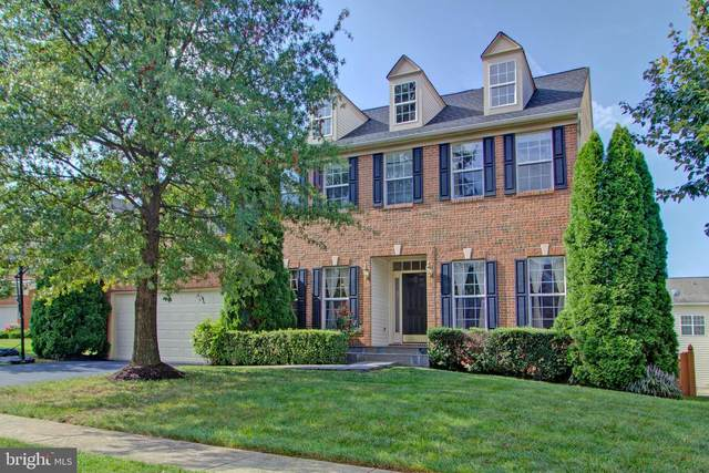 44317 Crow Court, ASHBURN, VA 20147 (#VALO2006014) :: Debbie Dogrul Associates - Long and Foster Real Estate