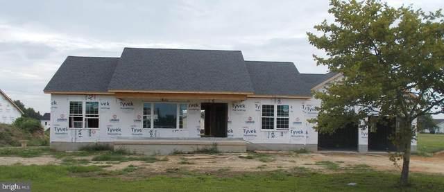 6710 Bens Lane, HURLOCK, MD 21643 (#MDDO2000486) :: At The Beach Real Estate