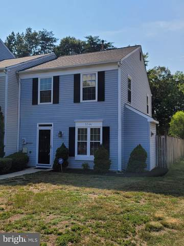 5744 Springfish Place, WALDORF, MD 20603 (#MDCH2002638) :: Ultimate Selling Team