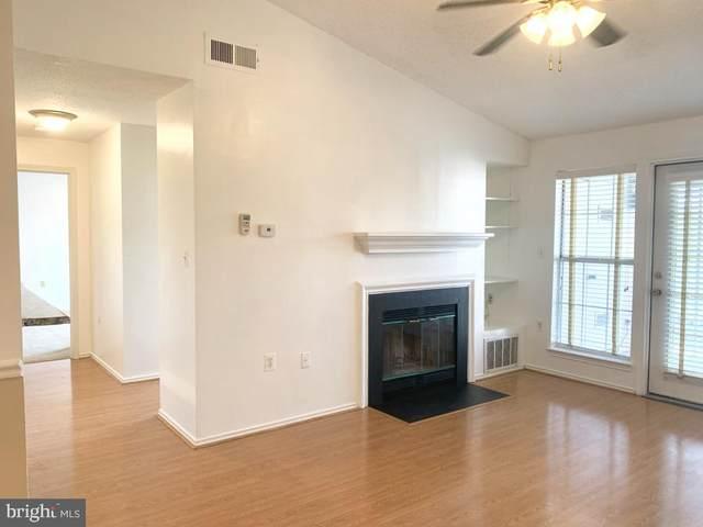 21024 Timber Ridge Terrace #302, ASHBURN, VA 20147 (#VALO2006164) :: Debbie Dogrul Associates - Long and Foster Real Estate