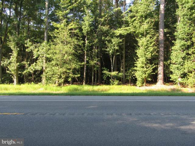 Asketum Branch Rd Parcel D, GEORGETOWN, DE 19947 (#DESU2004444) :: The Rhonda Frick Team