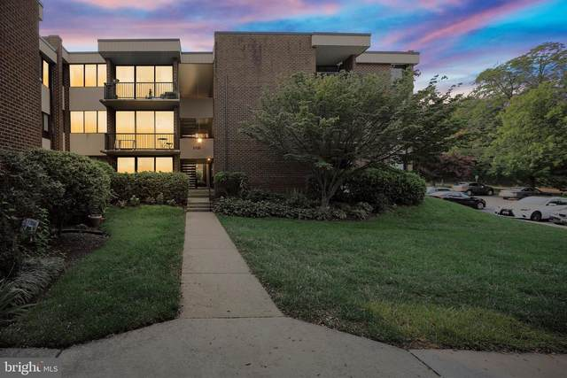 2109 Walsh View Terrace 12-303, SILVER SPRING, MD 20902 (#MDMC2011604) :: Peter Knapp Realty Group