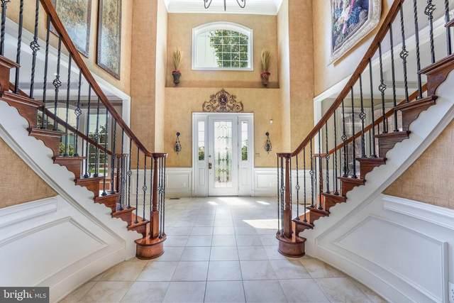 20144 Black Diamond Place, ASHBURN, VA 20147 (#VALO2006370) :: Debbie Dogrul Associates - Long and Foster Real Estate