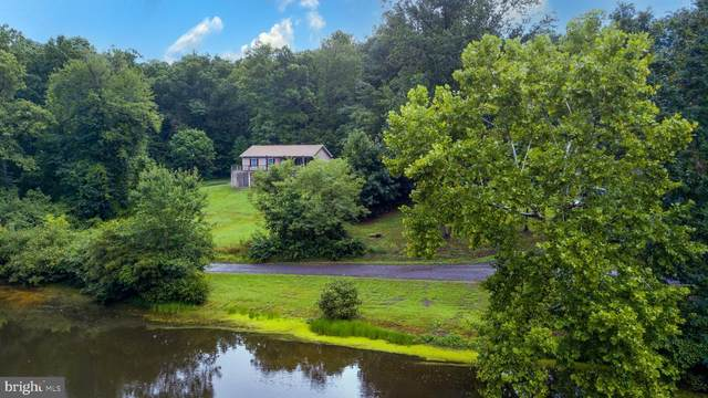 10365 River, RIXEYVILLE, VA 22737 (#VACU2000750) :: The Sky Group