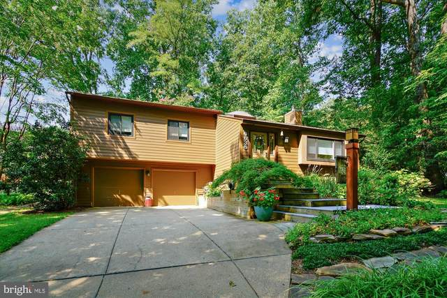 9638 Cold Star Court, COLUMBIA, MD 21046 (#MDHW2003796) :: A Magnolia Home Team