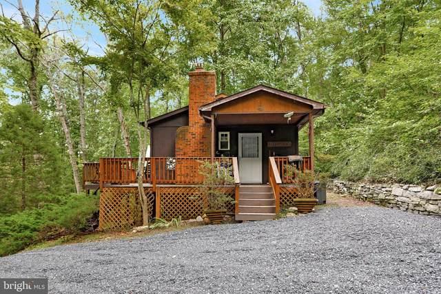 256 Blackberry Lane, NEW MARKET, VA 22844 (#VASH2000744) :: Debbie Dogrul Associates - Long and Foster Real Estate