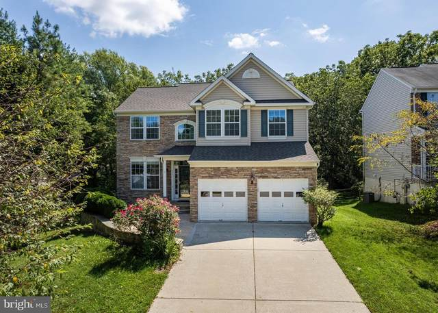 6201 Waving Willow Path, CLARKSVILLE, MD 21029 (#MDHW2003836) :: Corner House Realty