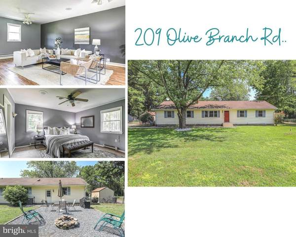 209 Olive Branch Road, STEVENSVILLE, MD 21666 (#MDQA2000806) :: Shamrock Realty Group, Inc