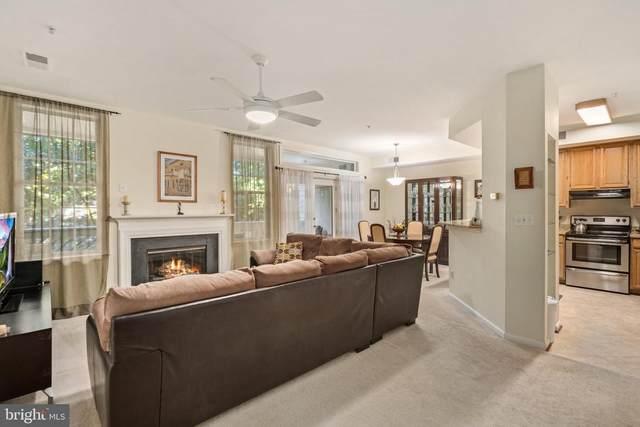 1367-C Garden Wall Circle #710, RESTON, VA 20194 (#VAFX2016938) :: Debbie Dogrul Associates - Long and Foster Real Estate