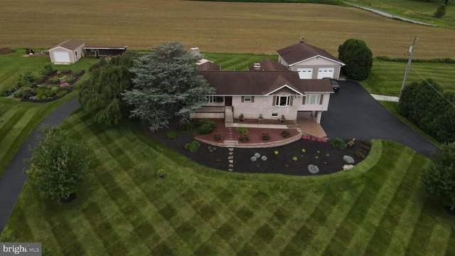 612 Mountain Drive, FREDERICKSBURG, PA 17026 (#PALN2001256) :: The Joy Daniels Real Estate Group