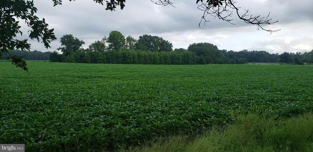 Drapers Mill Road, GOLDSBORO, MD 21636 (#MDCM2000428) :: McClain-Williamson Realty, LLC.