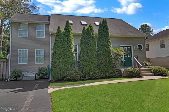 821 207TH Street, PASADENA, MD 21122 (#MDAA2007808) :: Shamrock Realty Group, Inc