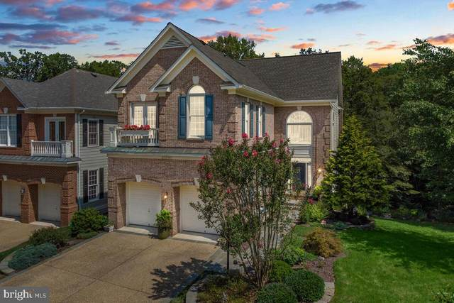 20260 Island View Court, STERLING, VA 20165 (#VALO2006822) :: Gail Nyman Group