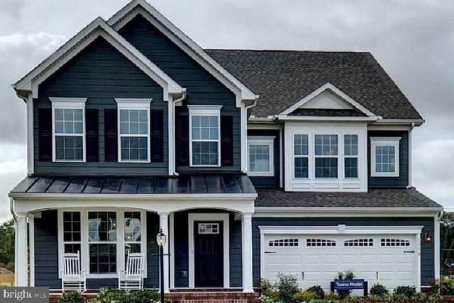3835 HOLLY DR., EDGEWATER, MD 21037 (#MDAA2007882) :: Colgan Real Estate