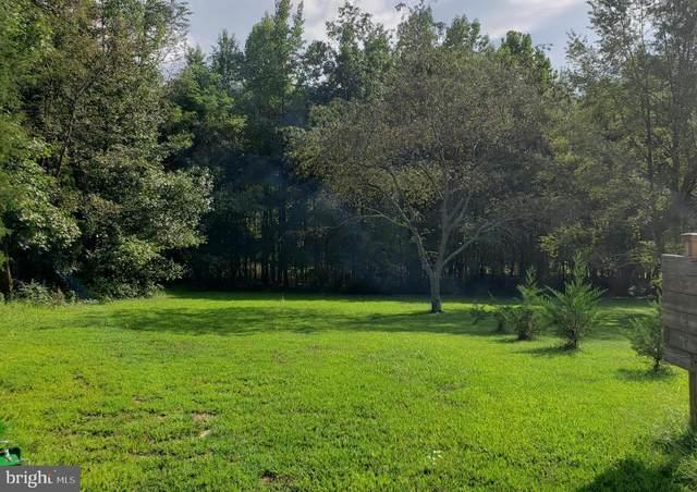 27998 Cedar View Court, MECHANICSVILLE, MD 20659 (#MDSM2001580) :: Dart Homes