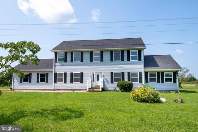 1915 Dailsville Road, CAMBRIDGE, MD 21613 (#MDDO2000550) :: At The Beach Real Estate