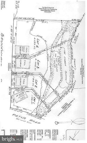 Lot 4 Brunkhorst Road, PRESTON, MD 21655 (#MDCM2000444) :: McClain-Williamson Realty, LLC.