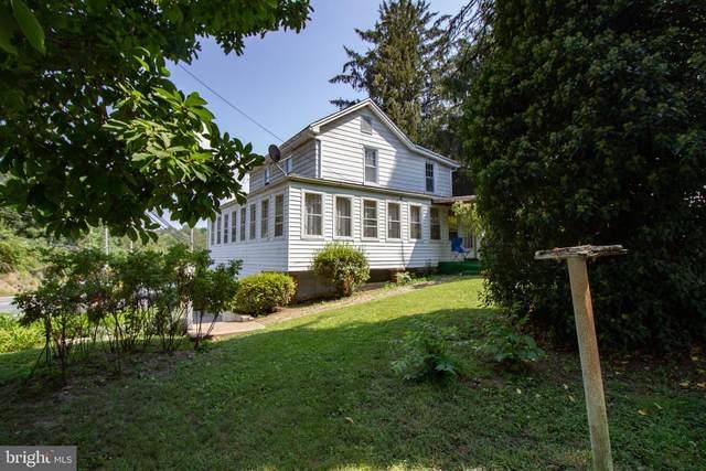 318 Wertzville Road, ENOLA, PA 17025 (#PACB2002598) :: The Joy Daniels Real Estate Group