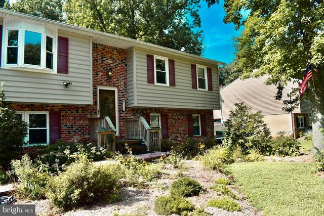 337 Larch Place, STEVENSVILLE, MD 21666 (#MDQA2000852) :: Realty Executives Premier