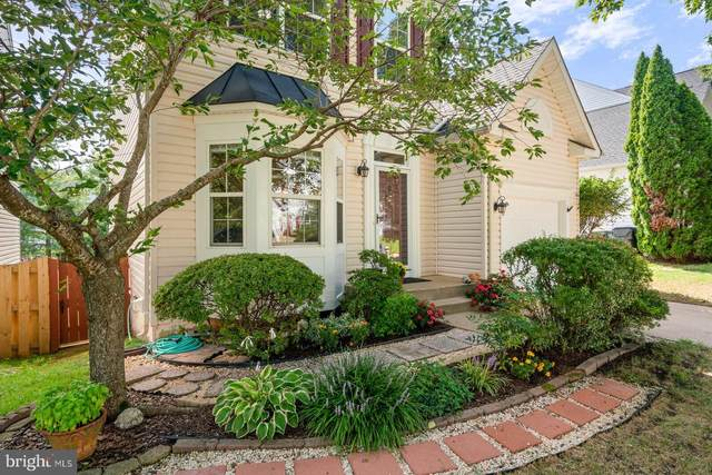 10 Candleridge Court, STAFFORD, VA 22554 (#VAST2002874) :: The Maryland Group of Long & Foster Real Estate