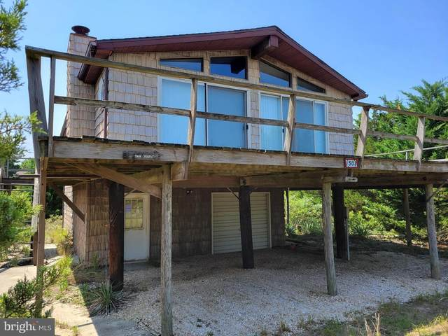 1503 Beach Plum Drive, MILTON, DE 19968 (#DESU2005296) :: Linda Dale Real Estate Experts